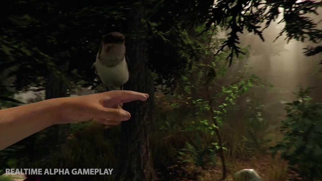 Gameplay pentru The Forest ce-ți arată pădurea și pericolele acesteia