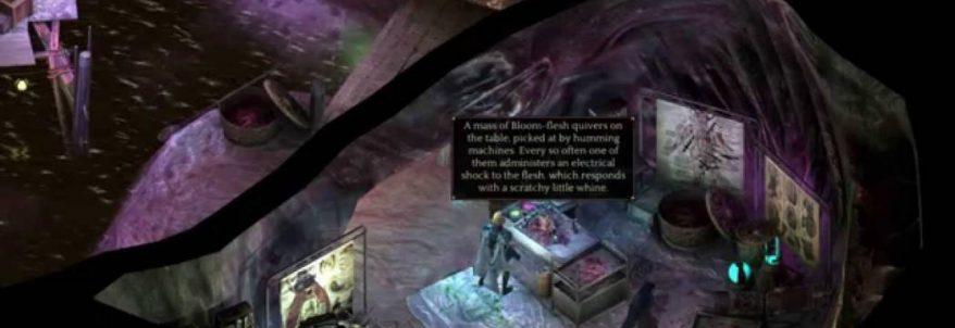 Gameplay pentru Torment: Tides of Numenera