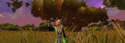Imagini World of Warcraft