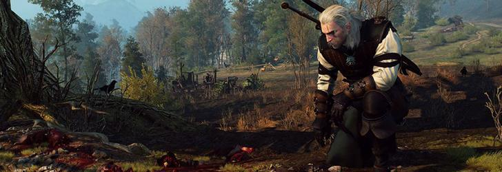 The Witcher 3 Wild Hunt Expansiuni