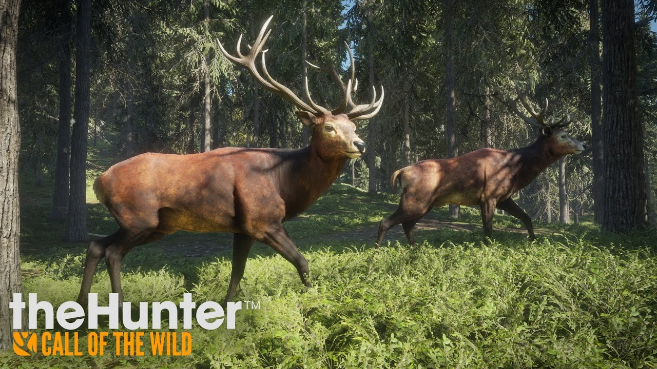 theHunter: Call of the Wild – Gameplay Trailer